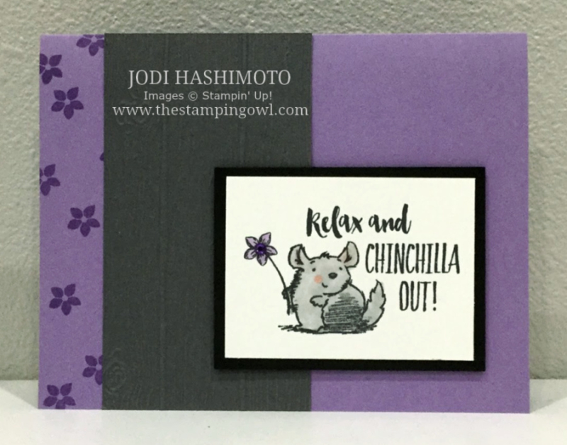 20200229 Chinchilla card