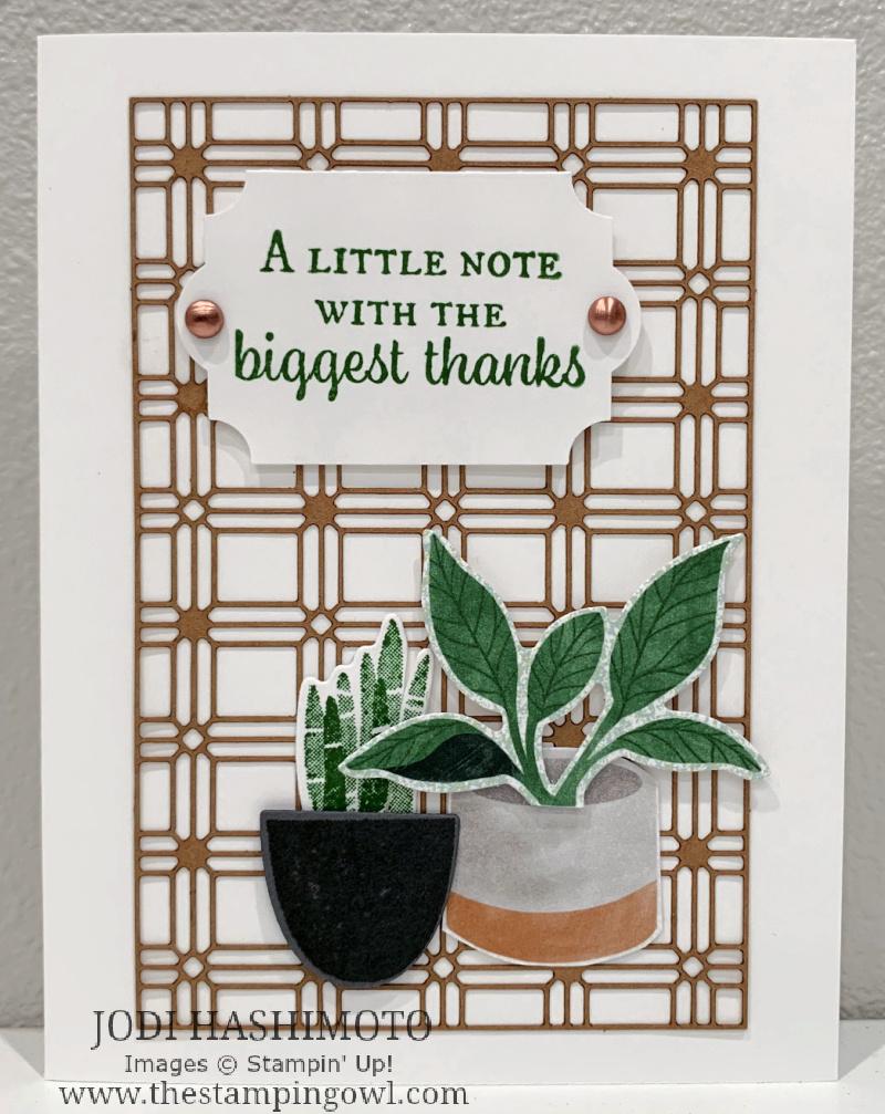 20210821 Lattice plants card
