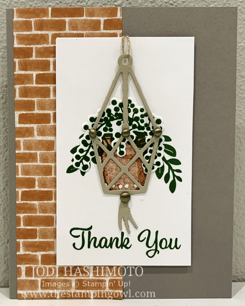 20210821 hanging plant card