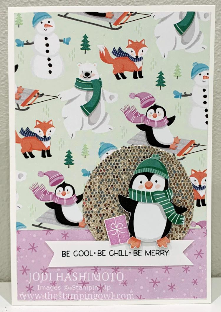 20210821 Penguin dsp card